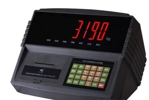 耀华XK3190-DS2仪表